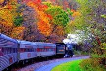 Train, Train...... / by 'Donna Marie'