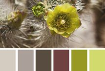 Interesting colour palettes