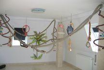 Birds playground