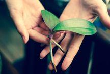 Green Life Love