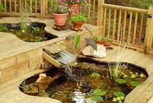 Garden & Outdoors / gardening