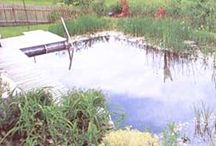 Farm: Water