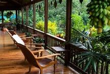 Honduras, Home Land. / by Mysmallwardrobe.com