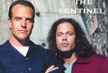 THE SENTINEL - The Complete Series / Starring Richard Burgi (Desperate Housewives) Broadcast in 24 countries outside North America All 65 episodes from 4 seasons