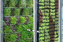 Visuté zahrady