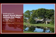 Market Reports For Wellington FL Homes For Sale / Wellington FL real estate status