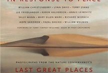 Landscape Photography Books / Researching the landscape photo tradition - Are there other books I should explore?