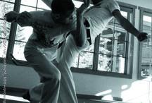 Capoeira Fundamentals / Capoeira Fundamentals Class To www.Coloradonewstyle.com
