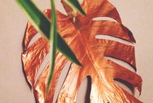 foliage wallpaper / by Orchis Floral Design