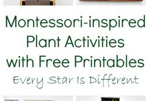 MONTESSORI ART ACTIVITIES