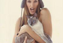 Slawni  i koty