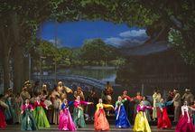 Gran Gala dell'Opera e del Balletto coreano / Scatti del Gran Gala dell'Opera e del Balletto coreano 2014