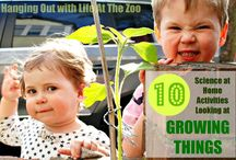 As We Grow / by Kimberly {Fridayfrogs Fcc}
