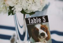 Doggy Details | Wedding / Are you and your other (human) half, like me, a bit dog mad? Do you love your pooch so much that they have in fact inspired just about every detail of your wedding day? If you're having a dog themed wedding then look no further...