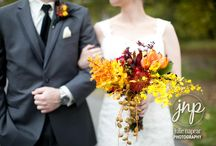 Fall Weddings / Looking for some ideas for a fall wedding? Check out these Julie Napear Photography Fall Weddings! / by Julie Napear Photography