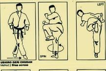 Martial Arts / by Miguel Vidal