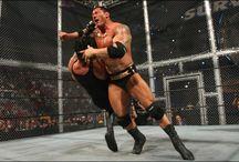 WWF/WWE Wrestling