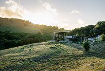Butterfly House / by Feldman Architecture
