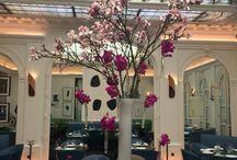 Compo. florales - Hotel & Evenement