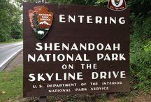 Shendoah National Park