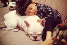 Japanese boy and french bulldog