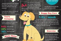 Pet Care Resources / Seasonal tips on pet health and pet care