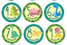 Milestone Stickers Afrikaans / Onthou elke maand van jou Baba se eerste jaar 12 stickers in 'n pak - een vir elke maand tot en met 1 jaar Grootte: Deursnee 10 cm Koop online www.cuddlycheeks.co.za