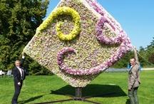 Projekte und events / Hier stellen wir unsere Projekte vor sowie gemeinsame Events mit Partnern der Floristen.
