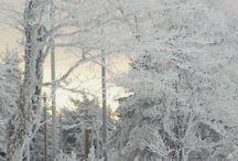 Hiver 》winter : ice