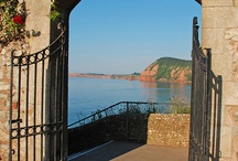 Out & About- Sidmouth
