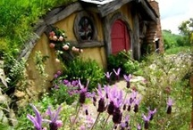 Eco freindly homes