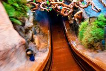 Disney Photos  / Photos is like to try capturing at the Disney parks / by Marissa Adrian