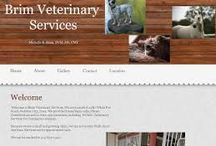 Iowa Veterinarians Who Practice One or More Modalities in Holistic and Integrative Veterinary / http://www.bestcatanddognutrition.com/roger-biduk/list-of-900-u-s-holistic-integrative-veterinarians/