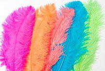 DIY Wedding Ideas / Fabulous ideas for creating that unique wedding look #Feathers #DIY #Wedding #bouquet #cake #invitations