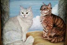 My cats portraits