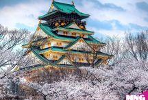 JAPONYA TURLARI / Tapınakları, kaleleri, modern binaları ve farklı yemekleri ile Japonya Turları...