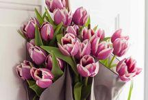 P@r@plu's schikken met bloemen