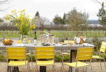 Great Outdoor Spaces / by Kelly Dubyne {Distinctive Interior Designs}