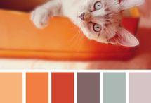 kid-color-room