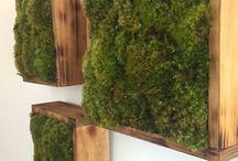 Jardins muraux