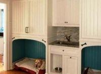 dog sleeping area