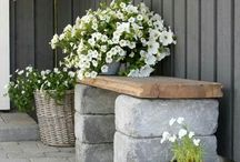 Blumen Kübel