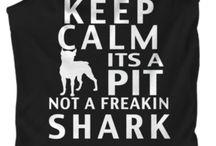 Pit Bull Quotes Питбуль Котировки / Pit bulls are very misunderstood but I have to say they are great dogs! Питбуль очень неправильно поняли, но я должен сказать, что они большие собаки!