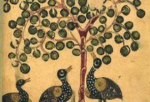 canard et pommier