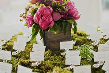 Escort Cards / by Laura Horne