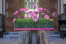 Flori / flori si ceea ce poti crea din ele