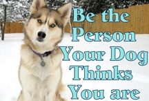 Husky Humor and Canine Quips / The dog said it!  Great words of wisdom that could only come from the mouths of our canine friends!