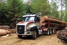 Big Trucks / by Dick Magruder