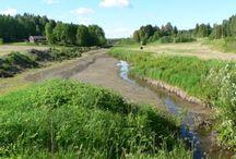 Luonnonmukainen peruskuivatus / Luonnonmukaisen peruskuivatuksen tavoitteena on kunnostaa purouomat perinteistä perkausta kevyemmin ja ympäristöystävällisemmin.