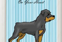 Rottweilers / This and that about the Rottweiler breed